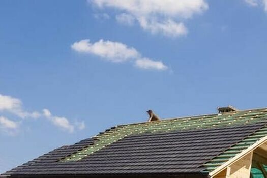 Expert residential roofing contractors based out of Glendale, AZ.